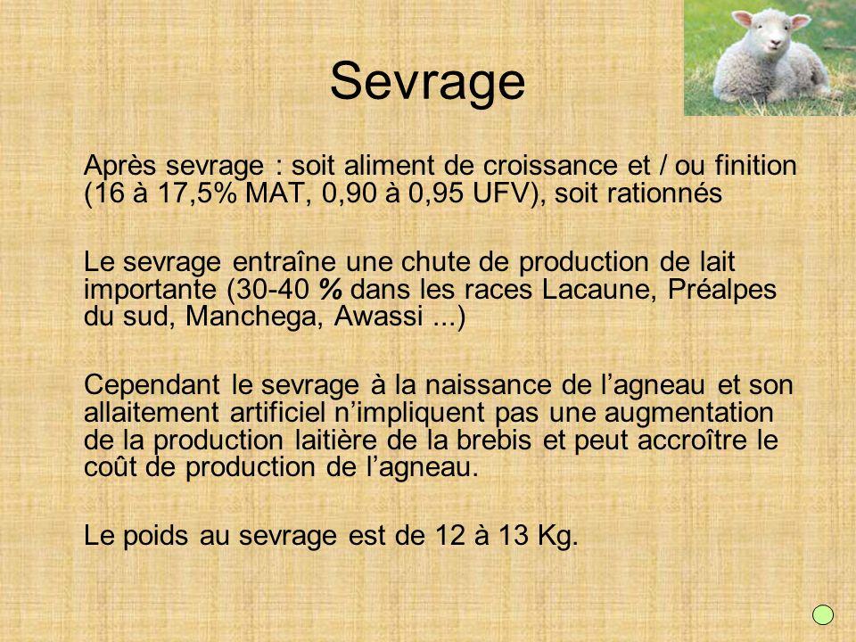 Sevrage Après sevrage : soit aliment de croissance et / ou finition (16 à 17,5% MAT, 0,90 à 0,95 UFV), soit rationnés Le sevrage entraîne une chute de