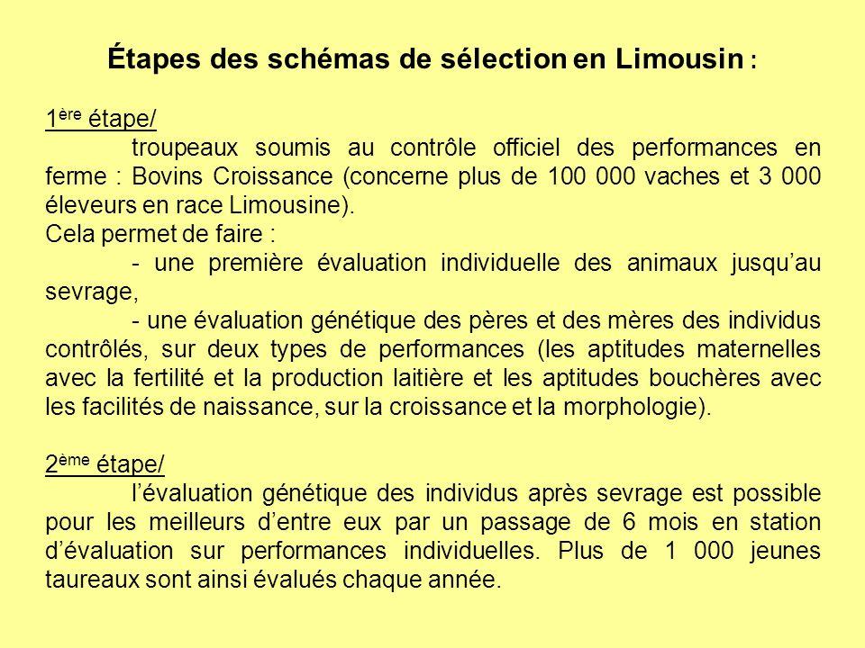 Étapes des schémas de sélection en Limousin : 1 ère étape/ troupeaux soumis au contrôle officiel des performances en ferme : Bovins Croissance (concer