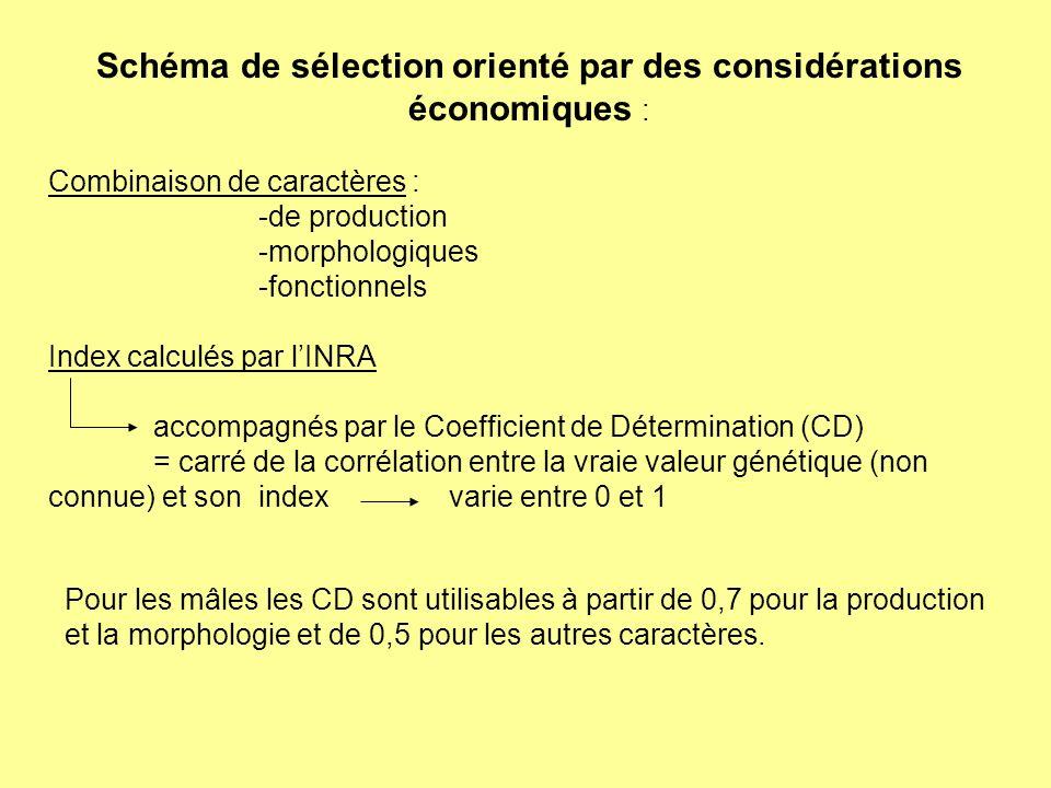 Schéma de sélection orienté par des considérations économiques : Combinaison de caractères : -de production -morphologiques -fonctionnels Index calcul