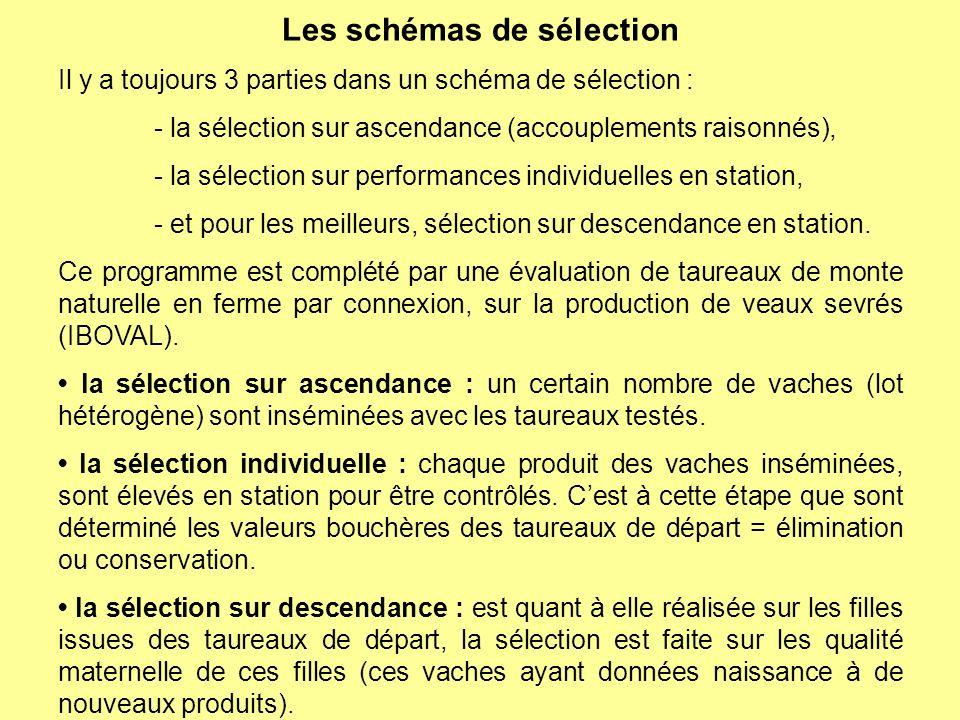 Les schémas de sélection Il y a toujours 3 parties dans un schéma de sélection : - la sélection sur ascendance (accouplements raisonnés), - la sélecti