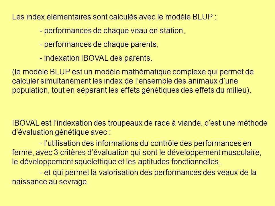 Les index élémentaires sont calculés avec le modèle BLUP : - performances de chaque veau en station, - performances de chaque parents, - indexation IB