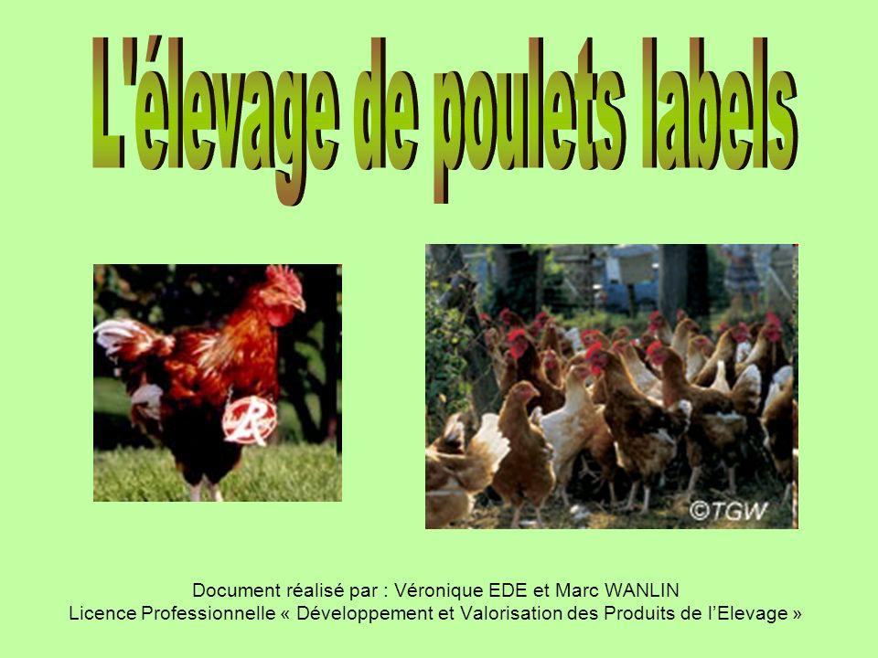 Document réalisé par : Véronique EDE et Marc WANLIN Licence Professionnelle « Développement et Valorisation des Produits de lElevage »