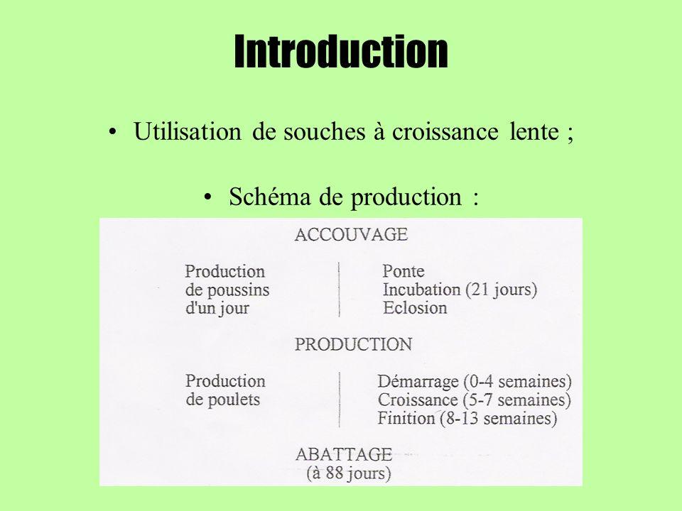 Introduction Utilisation de souches à croissance lente ; Schéma de production :