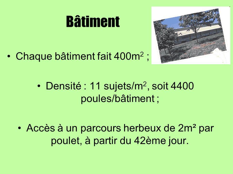 Bâtiment Chaque bâtiment fait 400m 2 ; Densité : 11 sujets/m 2, soit 4400 poules/bâtiment ; Accès à un parcours herbeux de 2m² par poulet, à partir du