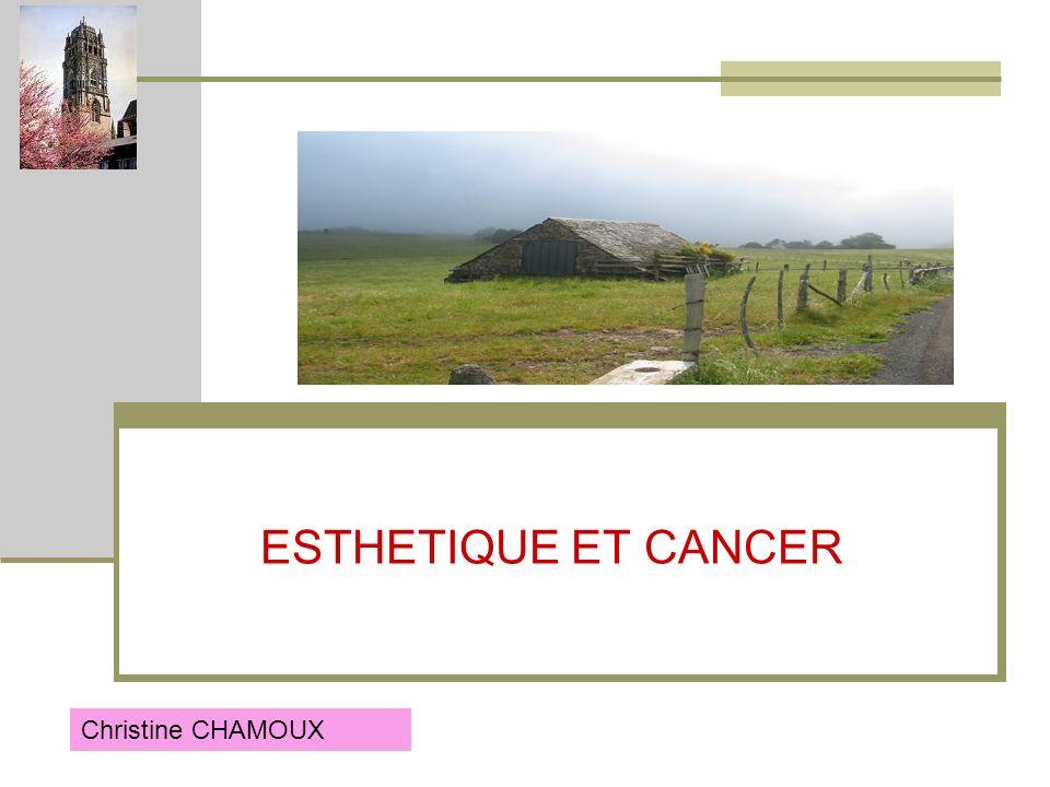 SOIN DE SUPPORT ESTHETIQUE Dans le cadre du plan cancer le service doncologie de RODEZ devait se mobiliser pour mettre en place une organisation la plus harmonieuse possible des soins de support en cancérologie.