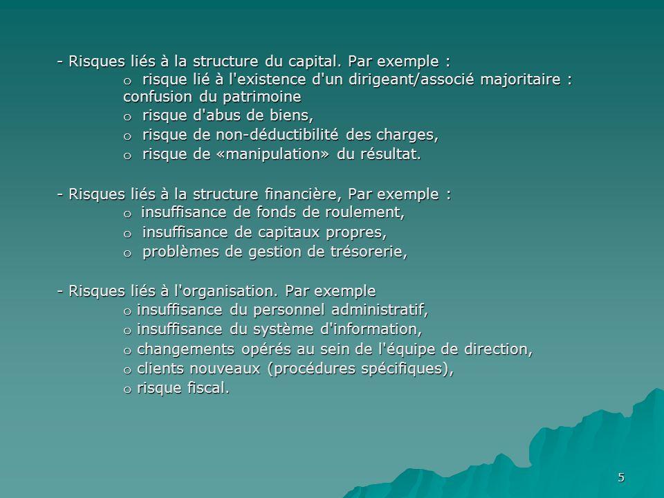 5 - Risques liés à la structure du capital. Par exemple : o risque lié à l'existence d'un dirigeant/associé majoritaire : confusion du patrimoine o ri