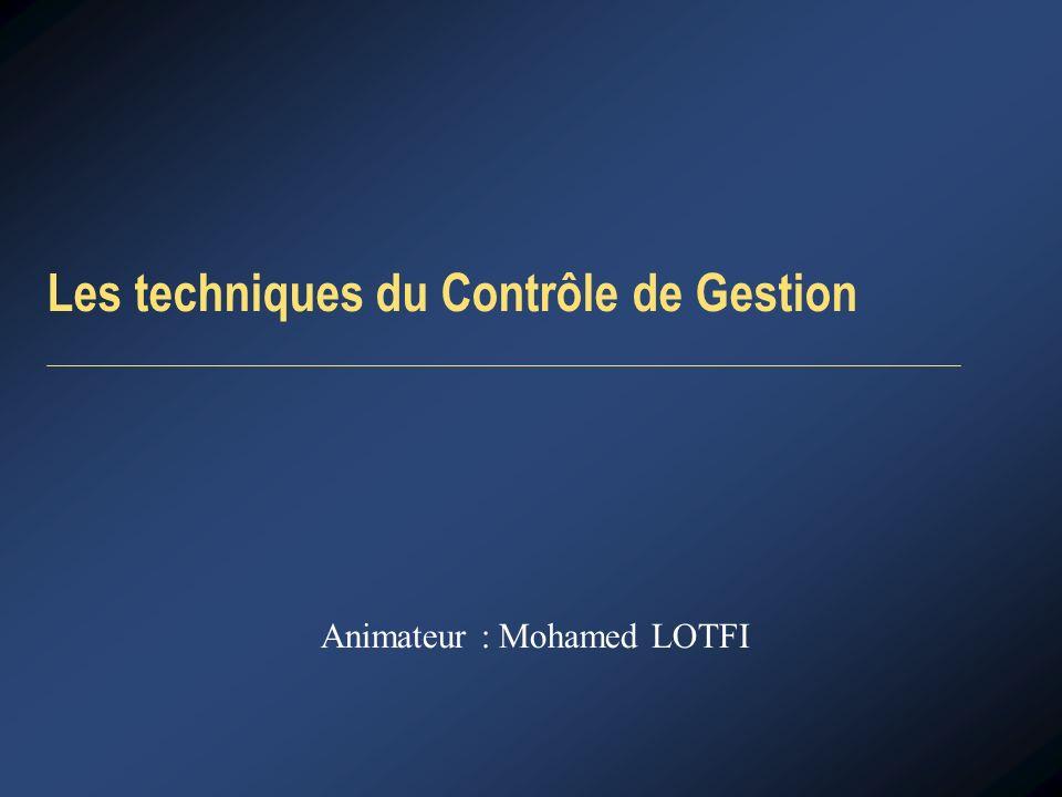 Les techniques du Contrôle de Gestion Animateur : Mohamed LOTFI
