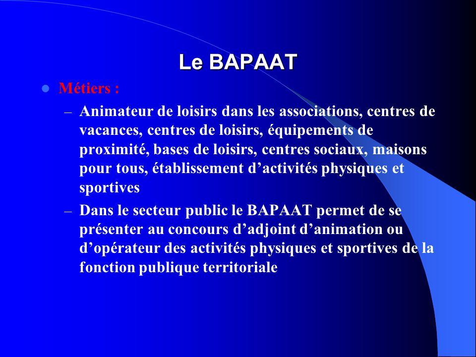 Le BAPAAT Métiers : – Animateur de loisirs dans les associations, centres de vacances, centres de loisirs, équipements de proximité, bases de loisirs,