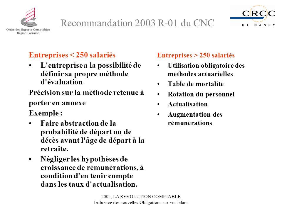 2005, LA REVOLUTION COMPTABLE Influence des nouvelles Obligations sur vos bilans Entreprises < 250 salariés L'entreprise a la possibilité de définir s