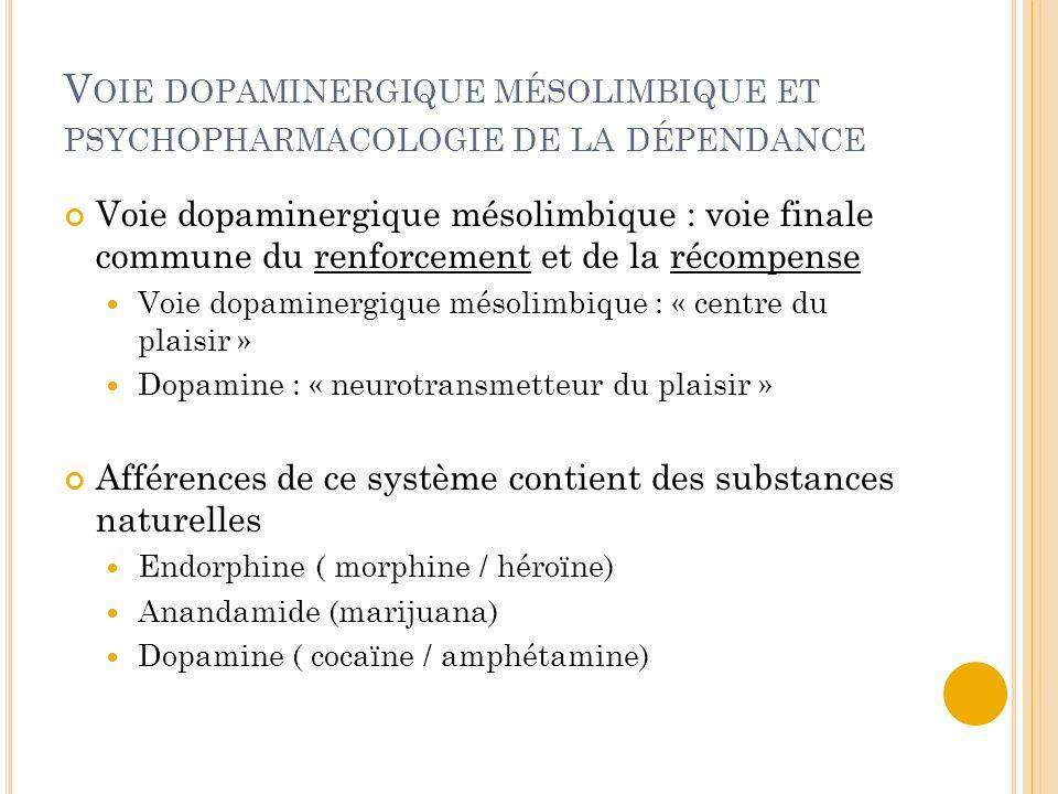 V OIE DOPAMINERGIQUE MÉSOLIMBIQUE ET PSYCHOPHARMACOLOGIE DE LA DÉPENDANCE Voie dopaminergique mésolimbique : voie finale commune du renforcement et de