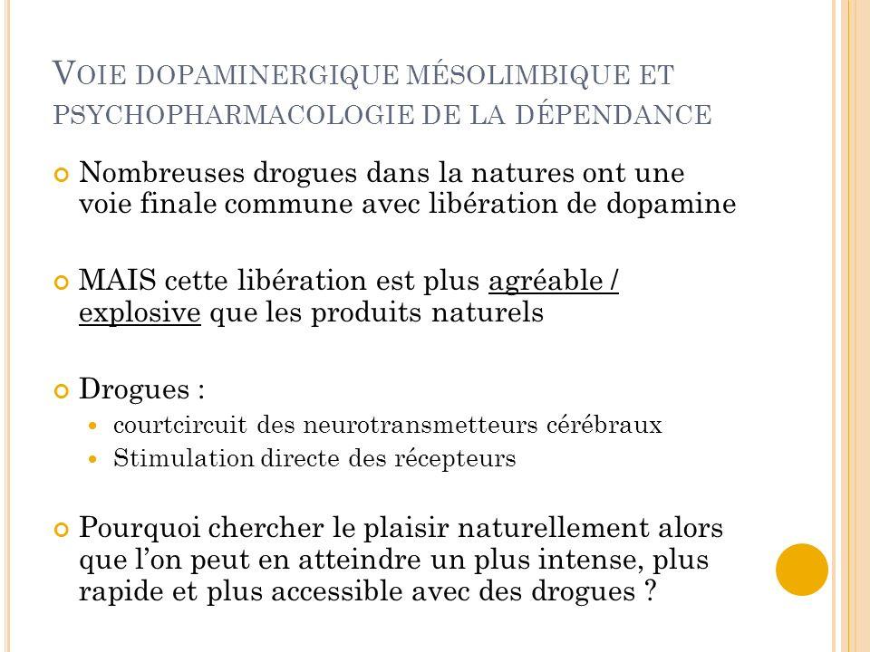 V OIE DOPAMINERGIQUE MÉSOLIMBIQUE ET PSYCHOPHARMACOLOGIE DE LA DÉPENDANCE Nombreuses drogues dans la natures ont une voie finale commune avec libérati