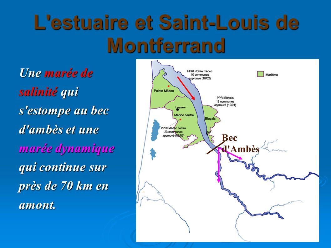 L'estuaire et Saint-Louis de Montferrand Une marée de salinité qui s'estompe au bec d'ambès et une marée dynamique qui continue sur près de 70 km en a