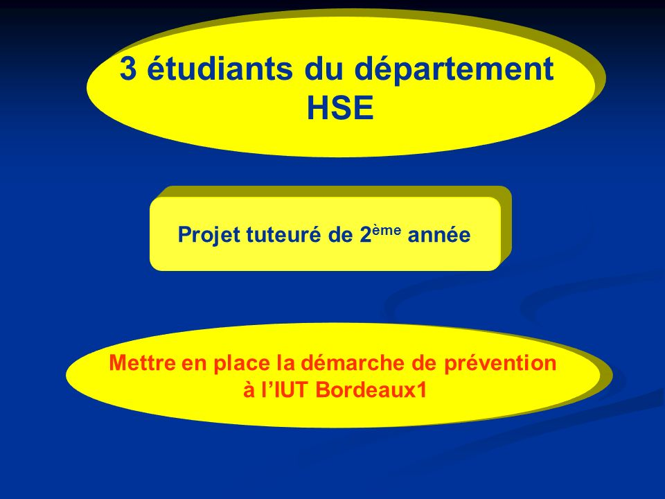 3 étudiants du département HSE Projet tuteuré de 2 ème année Mettre en place la démarche de prévention à lIUT Bordeaux1