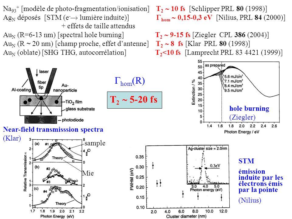 Na 93 + [modèle de photo-fragmentation/ionisation] T 2 10 fs [Schlipper PRL 80 (1998)] Ag N déposés [STM (e - lumière induite)] hom 0,15-0,3 eV [Niliu