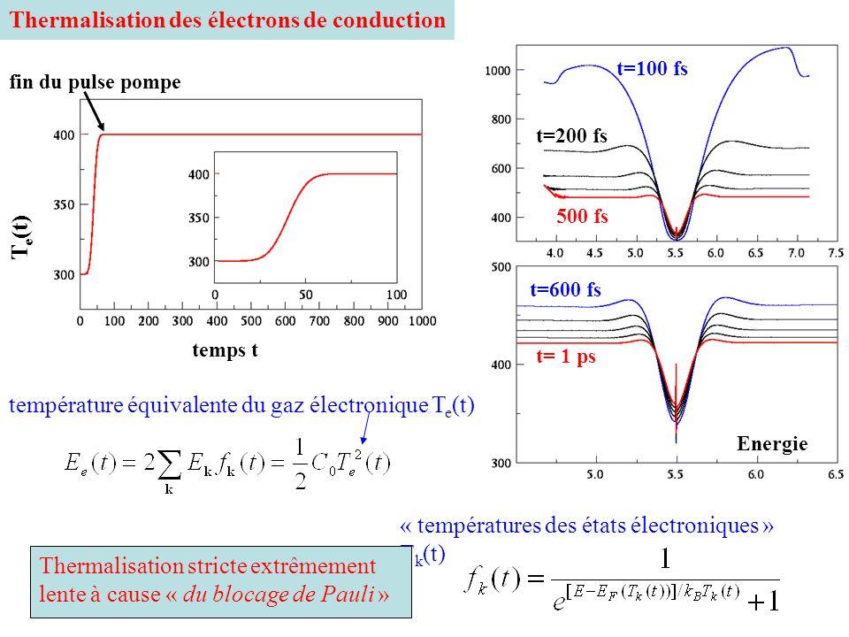 Thermalisation des électrons de conduction température équivalente du gaz électronique T e (t) « températures des états électroniques » T k (t) temps