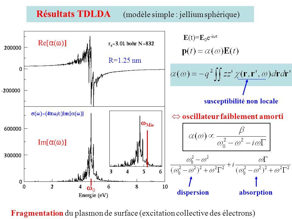 E(t)=E 0 e -i t Résultats TDLDA (modèle simple : jellium sphérique) susceptibilité non locale R=1.25 nm Mie 0 Fragmentation du plasmon de surface (exc