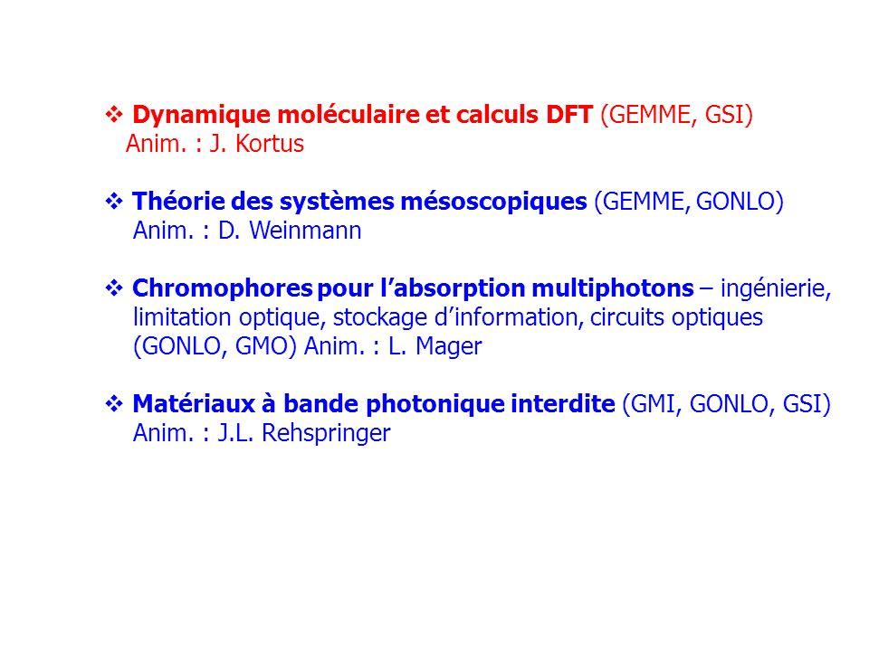 Dynamique moléculaire et calculs DFT (GEMME, GSI) Anim. : J. Kortus Théorie des systèmes mésoscopiques (GEMME, GONLO) Anim. : D. Weinmann Chromophores