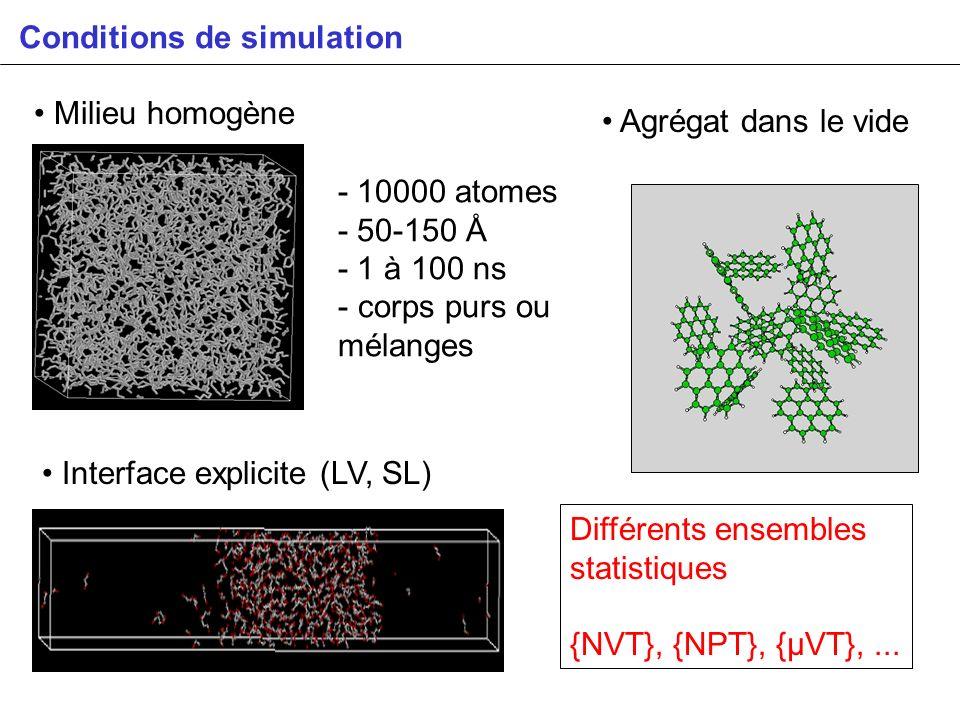 Conditions de simulation Milieu homogène - 10000 atomes - 50-150 Å - 1 à 100 ns - corps purs ou mélanges Agrégat dans le vide Interface explicite (LV,