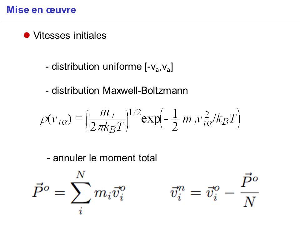 Mise en œuvre Vitesses initiales - distribution uniforme [-v a,v a ] - distribution Maxwell-Boltzmann - annuler le moment total