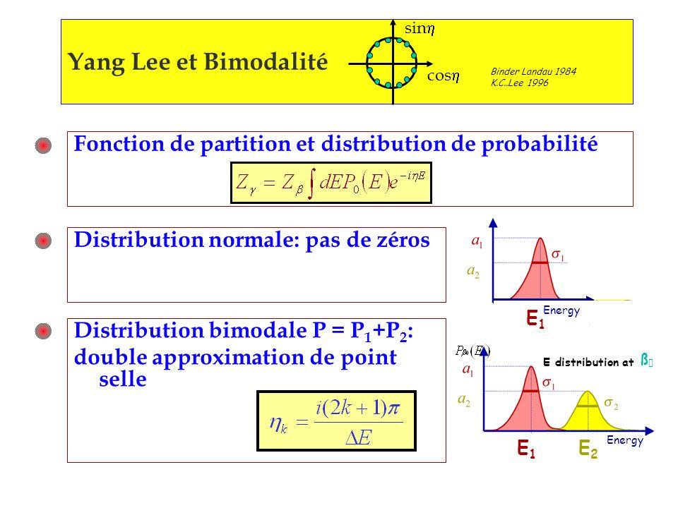 Yang Lee et Bimodalité Binder Landau 1984 K.C..Lee 1996 sin cos Fonction de partition et distribution de probabilité Distribution normale: pas de zéros Distribution bimodale P = P 1 +P 2 : double approximation de point selle E1E1 E2E2 ß E distribution at Energy E1E1