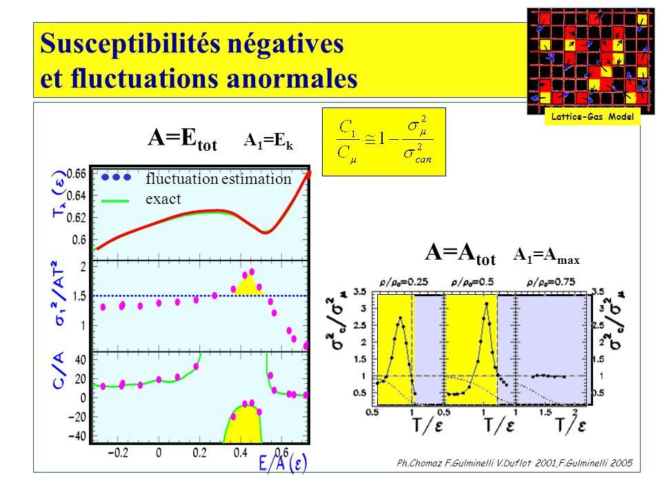 Susceptibilités négatives et fluctuations anormales fluctuation estimation exact Lattice-Gas Model Ph.Chomaz F.Gulminelli V.Duflot 2001,F.Gulminelli 2