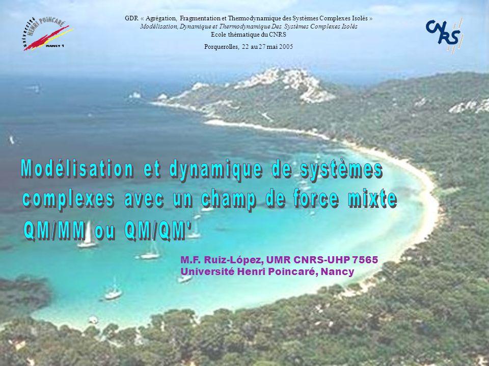 M.F. Ruiz-López, UMR CNRS-UHP 7565 Université Henri Poincaré, Nancy GDR « Agrégation, Fragmentation et Thermodynamique des Systèmes Complexes Isolés »