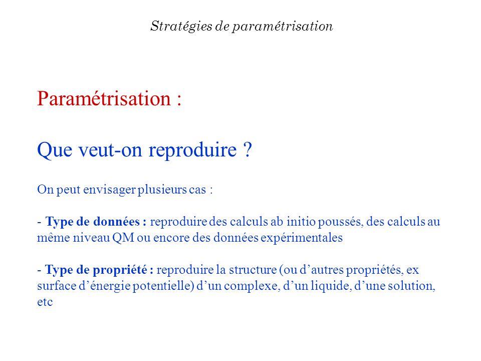 Paramétrisation : Que veut-on reproduire ? On peut envisager plusieurs cas : - Type de données : reproduire des calculs ab initio poussés, des calculs
