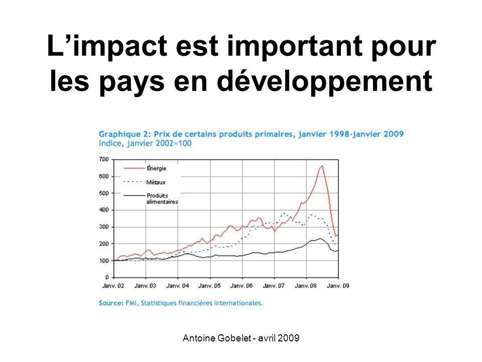 Antoine Gobelet - avril 2009 Limpact est important pour les pays en développement