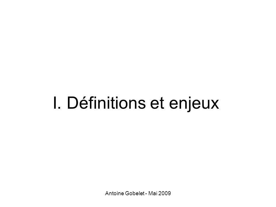 Antoine Gobelet - Mai 2009 IV. Politiques