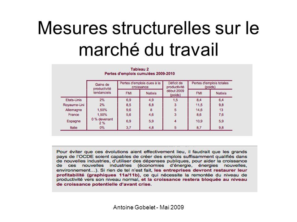 Antoine Gobelet - Mai 2009 Mesures structurelles sur le marché du travail