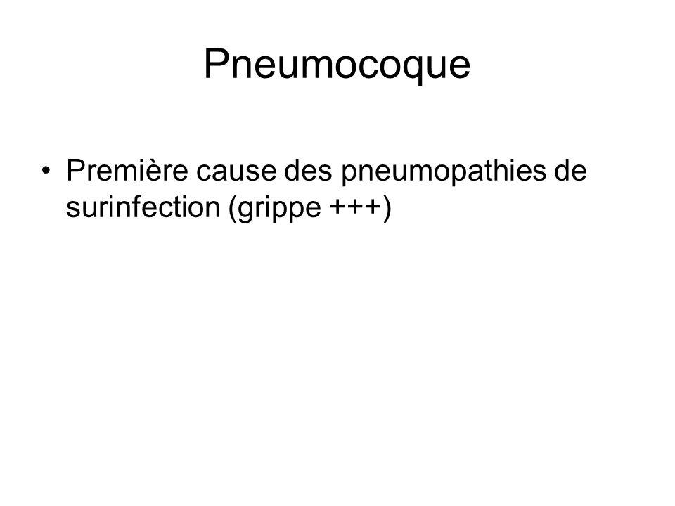Pneumocoque Première cause des pneumopathies de surinfection (grippe +++)