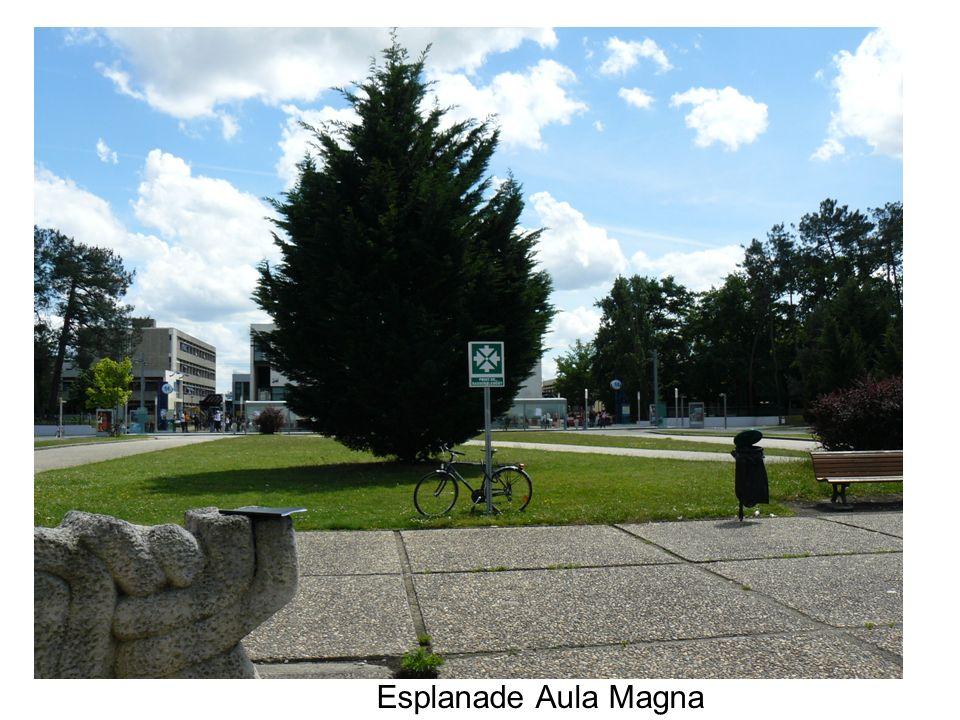 Esplanade Aula Magna Il existe différentes zones dalarme