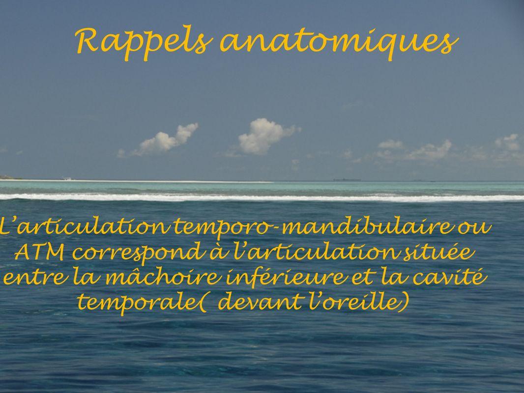 Rappels anatomiques Larticulation temporo-mandibulaire ou ATM correspond à larticulation située entre la mâchoire inférieure et la cavité temporale( devant loreille)