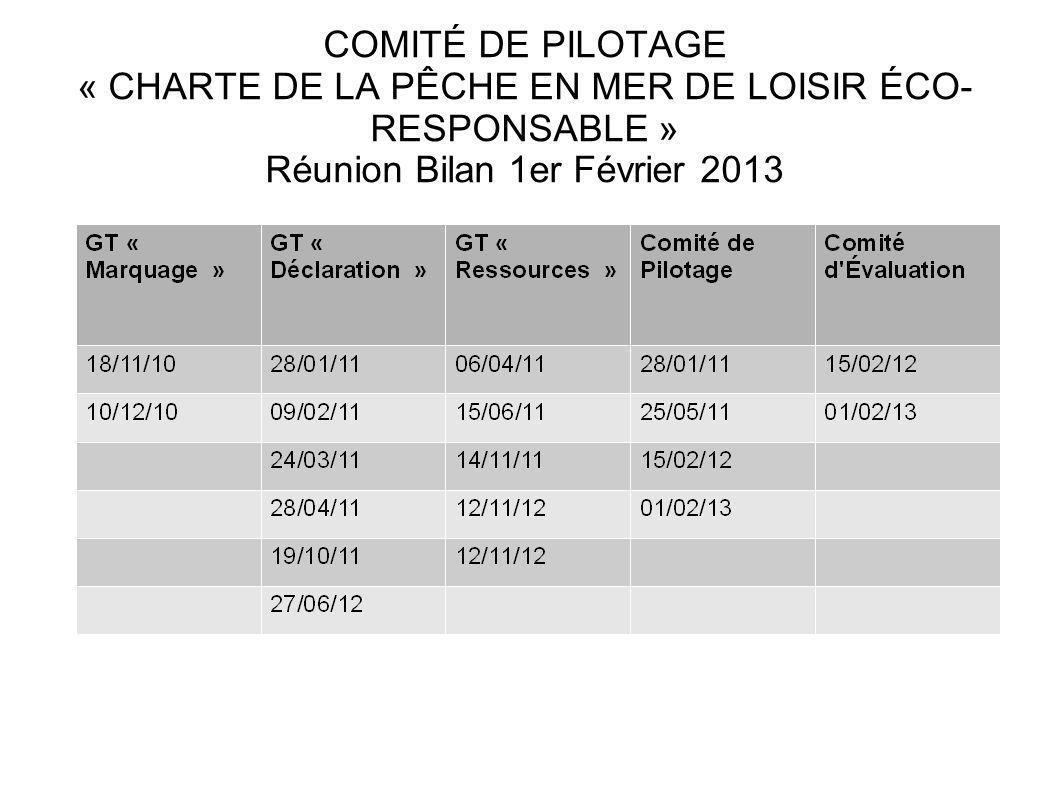 COMITÉ DE PILOTAGE « CHARTE DE LA PÊCHE EN MER DE LOISIR ÉCO- RESPONSABLE » Réunion Bilan 1er Février 2013