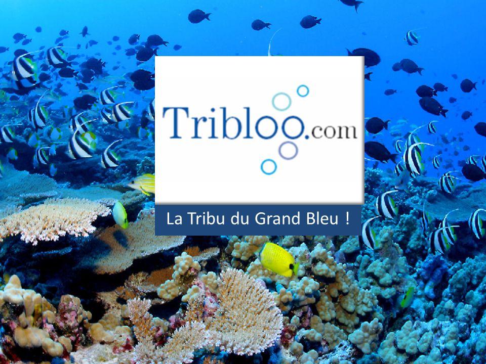 La Tribu du Grand Bleu !