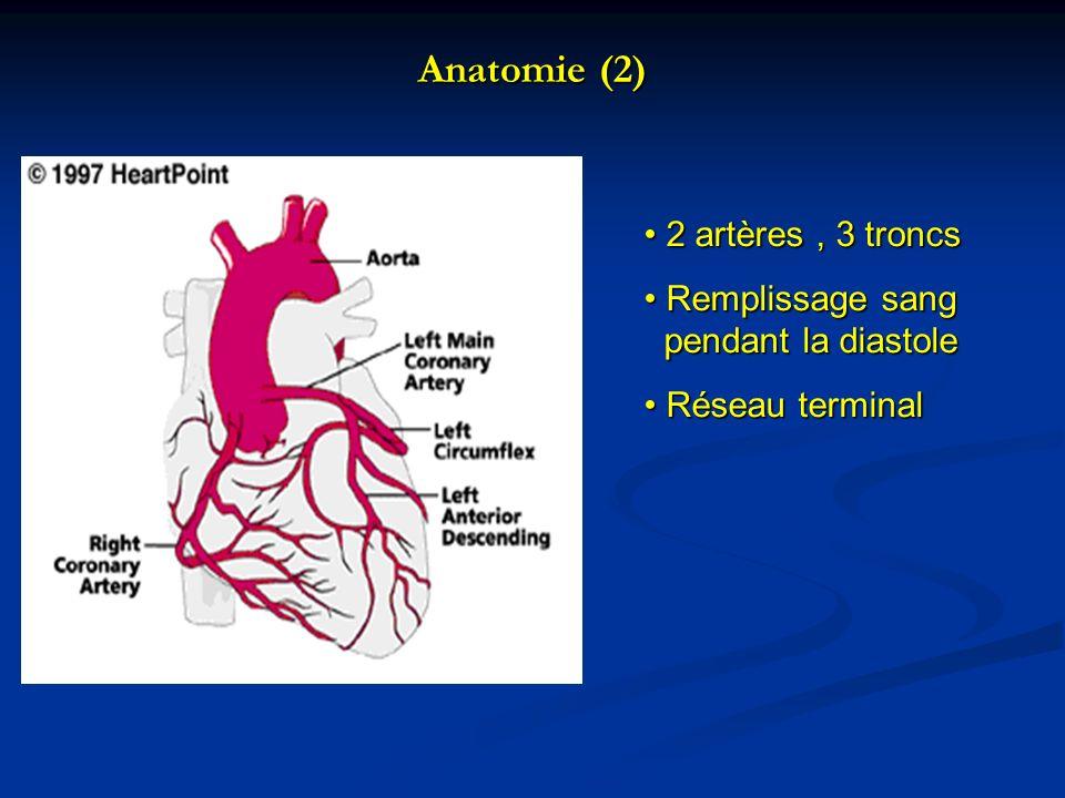 Anatomie (2) 2 artères, 3 troncs 2 artères, 3 troncs Remplissage sang pendant la diastole Remplissage sang pendant la diastole Réseau terminal Réseau