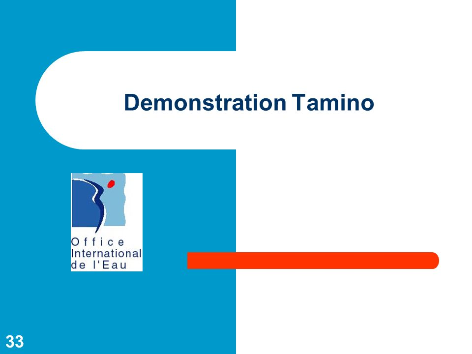 33 Demonstration Tamino