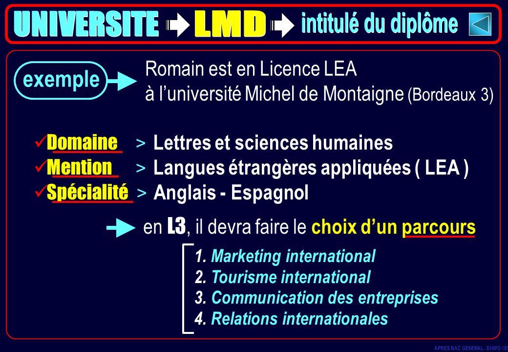 exemple 1. Marketing international 2. Tourisme international 3. Communication des entreprises 4. Relations internationales Romain est en Licence LEA à