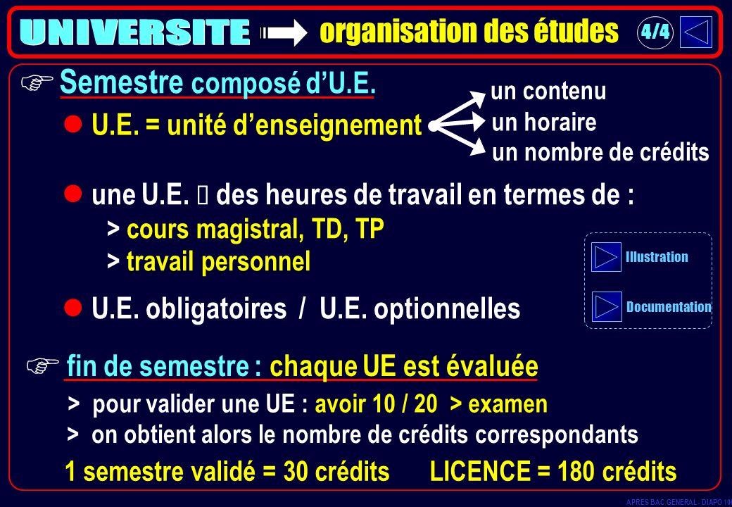 organisation des études U.E. = unité denseignement un horaire un nombre de crédits > pour valider une UE : avoir 10 / 20 > examen > on obtient alors l