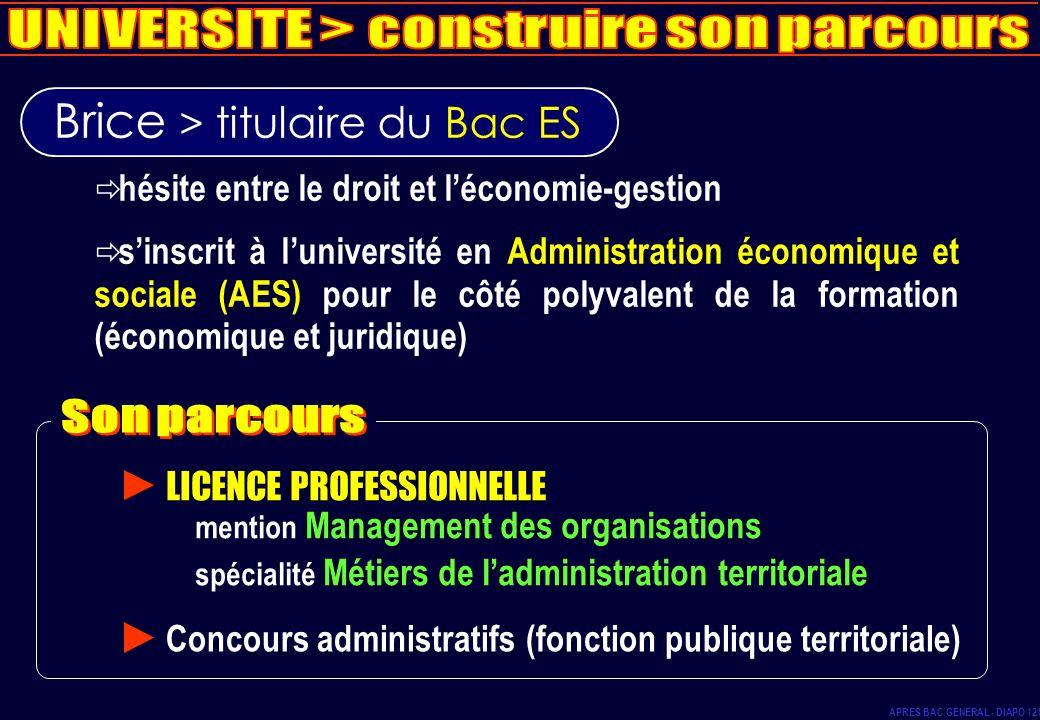 Brice > titulaire du Bac ES hésite entre le droit et léconomie-gestion sinscrit à luniversité en Administration économique et sociale (AES) pour le cô