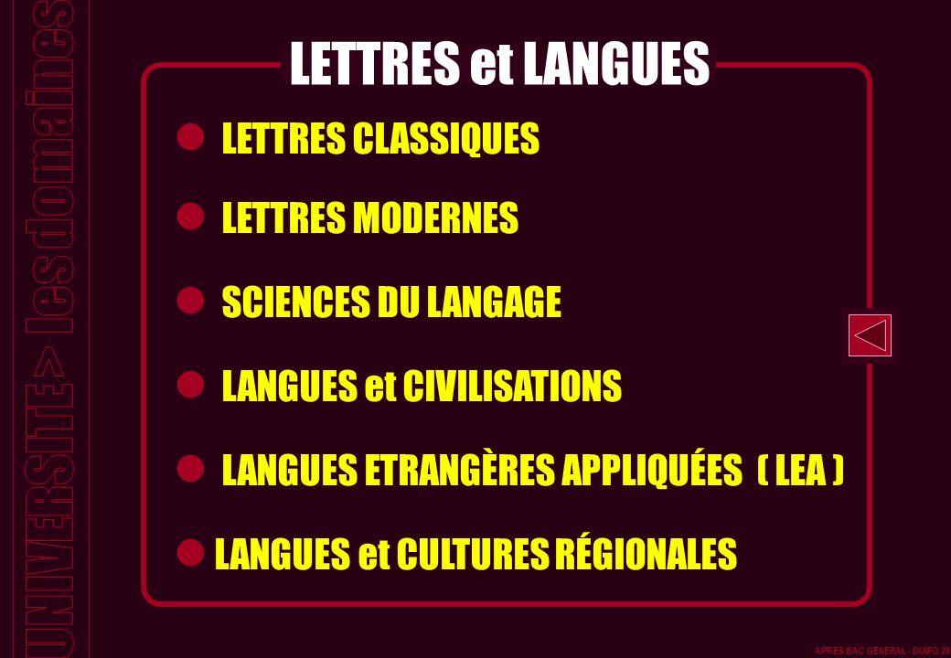 LETTRES CLASSIQUES LETTRES MODERNES SCIENCES DU LANGAGE LANGUES et CIVILISATIONS LANGUES ETRANGÈRES APPLIQUÉES ( LEA ) LANGUES et CULTURES RÉGIONALES