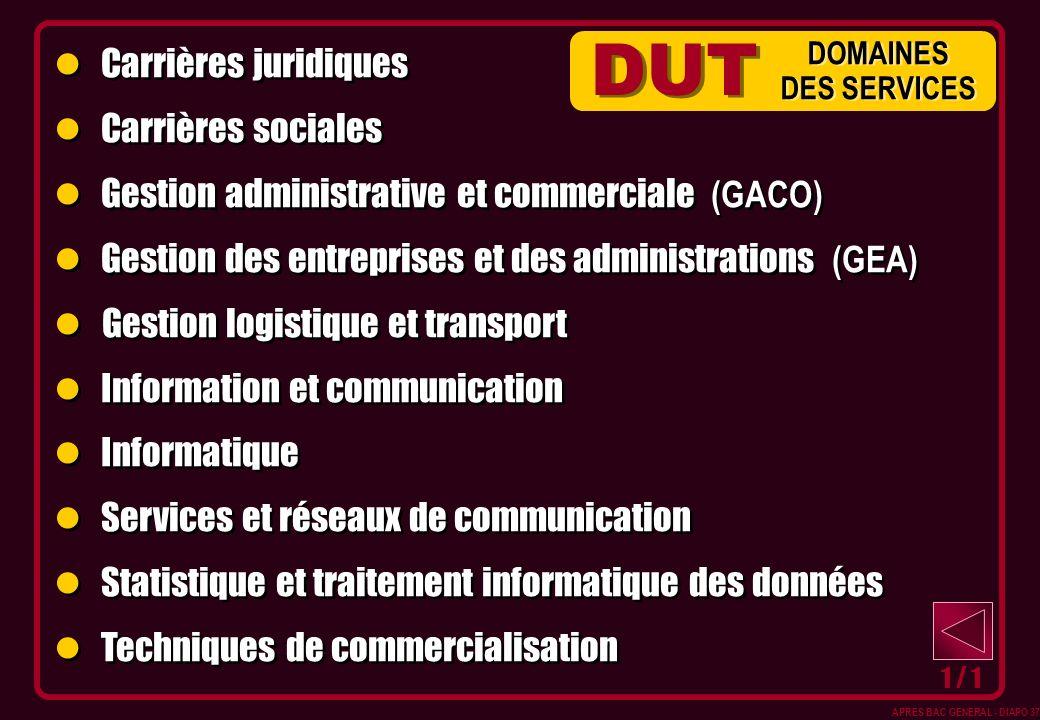 Carrières juridiques Carrières sociales Gestion administrative et commerciale (GACO) Gestion des entreprises et des administrations (GEA) Gestion logi