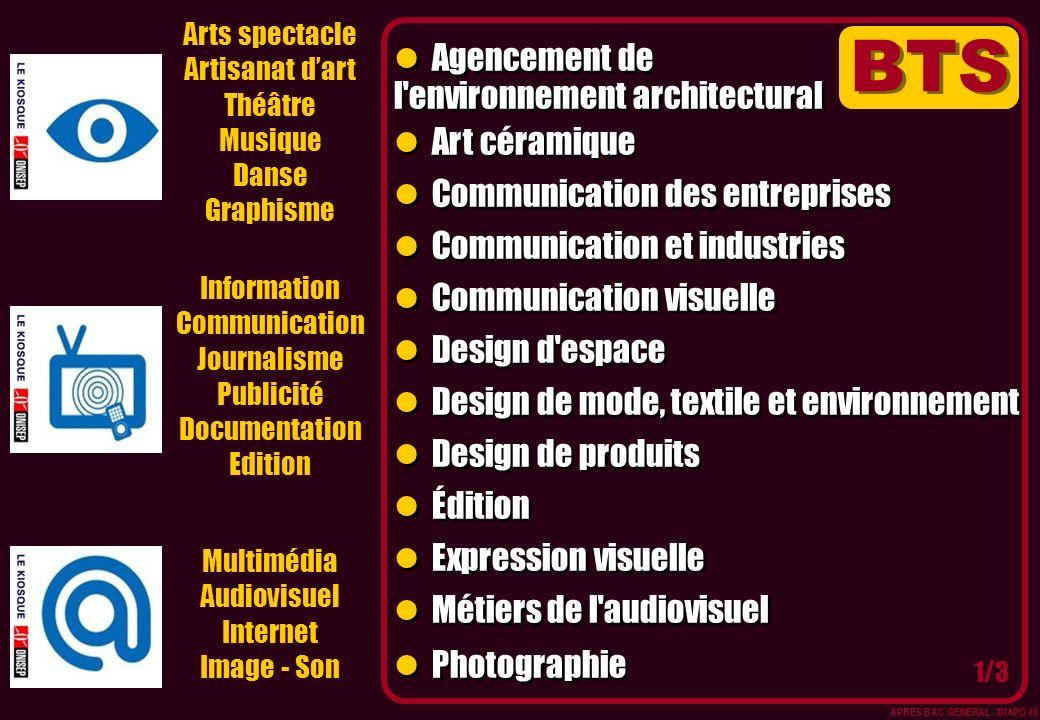 Arts spectacle Artisanat dart Théâtre Musique Danse Graphisme Multimédia Audiovisuel Internet Image - Son Information Communication Journalisme Public