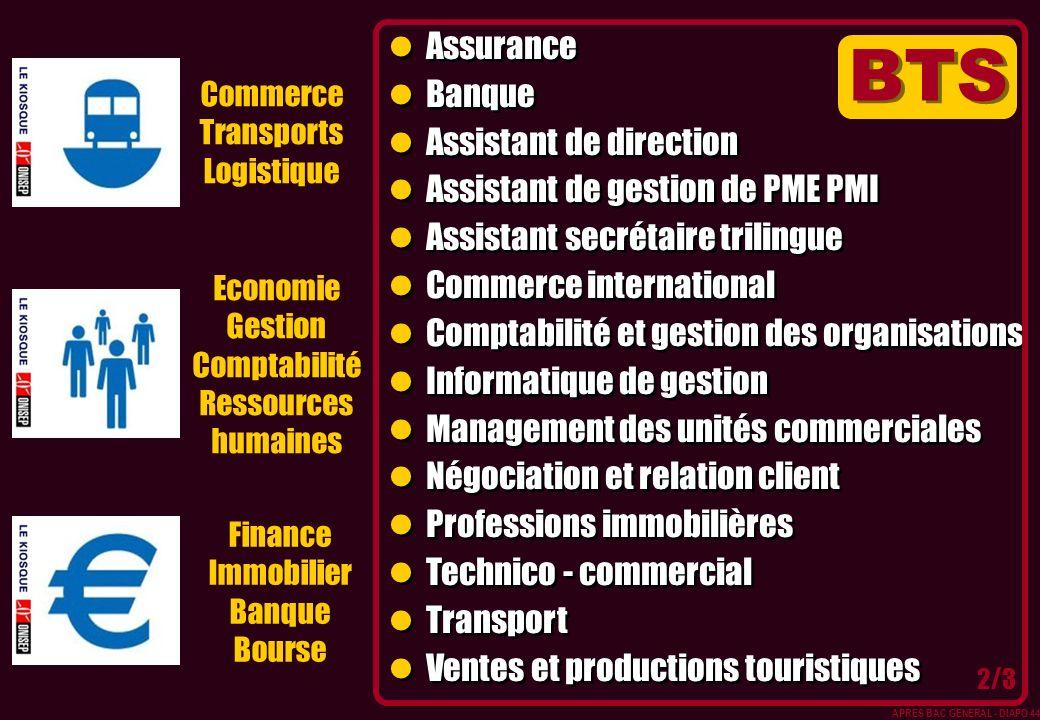 Commerce Transports Logistique Economie Gestion Comptabilité Ressources humaines Finance Immobilier Banque Bourse Assurance Banque Assistant de direct