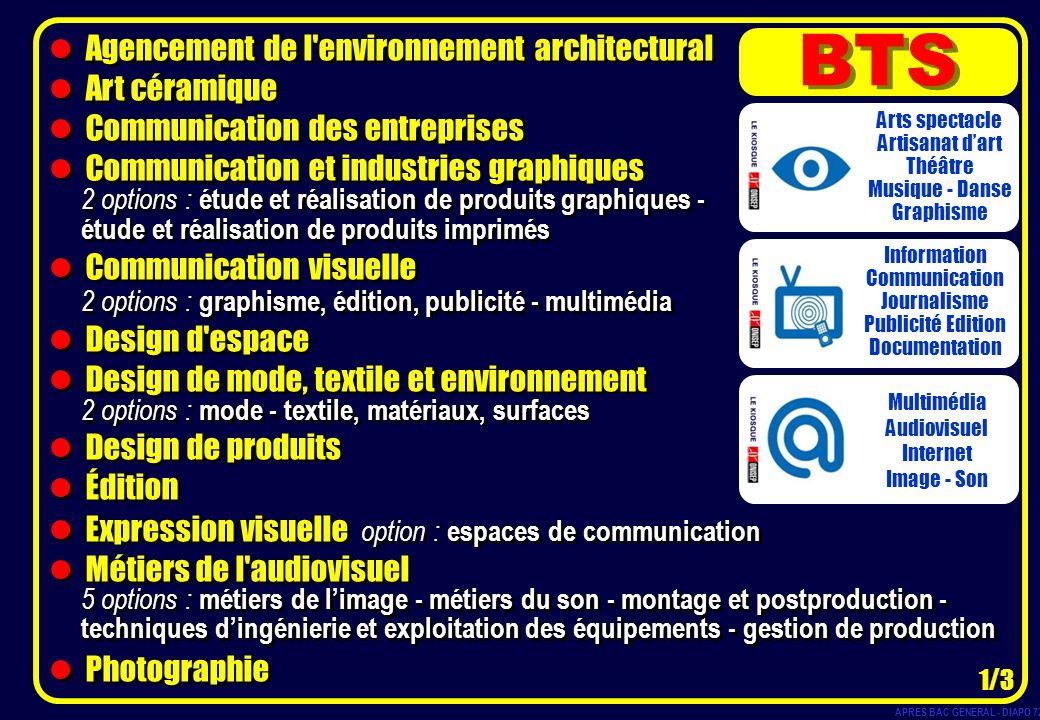 Agencement de l'environnement architectural Art céramique Communication des entreprises Communication et industries graphiques 2 options : étude et ré