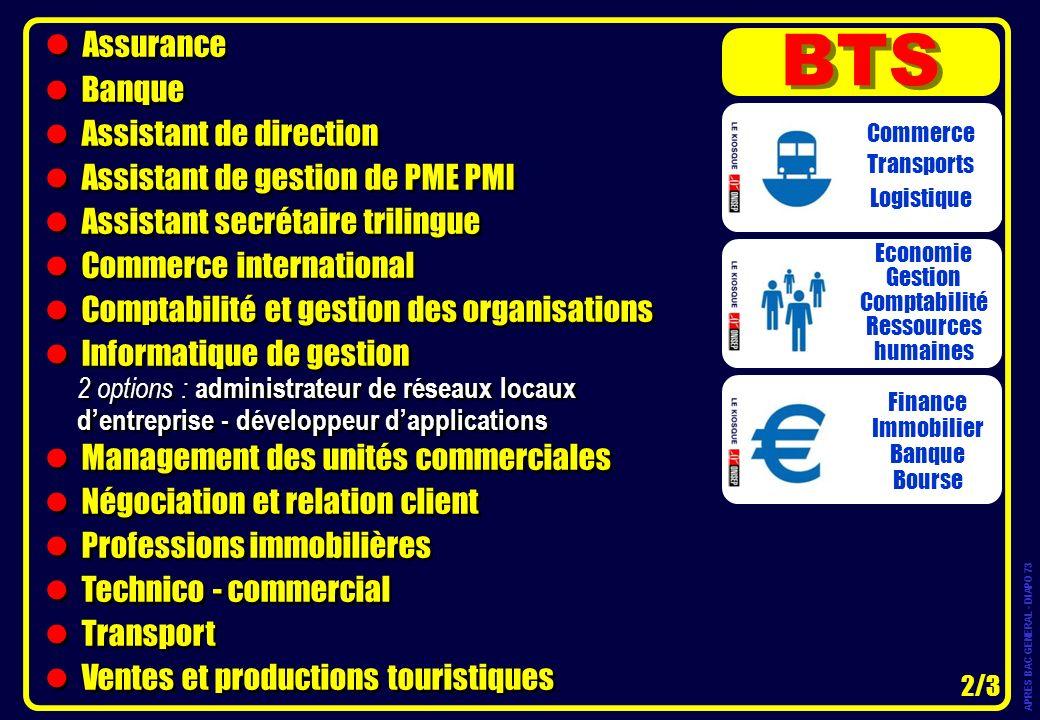 Assurance Banque Assistant de direction Assistant de gestion de PME PMI Assistant secrétaire trilingue Commerce international Comptabilité et gestion
