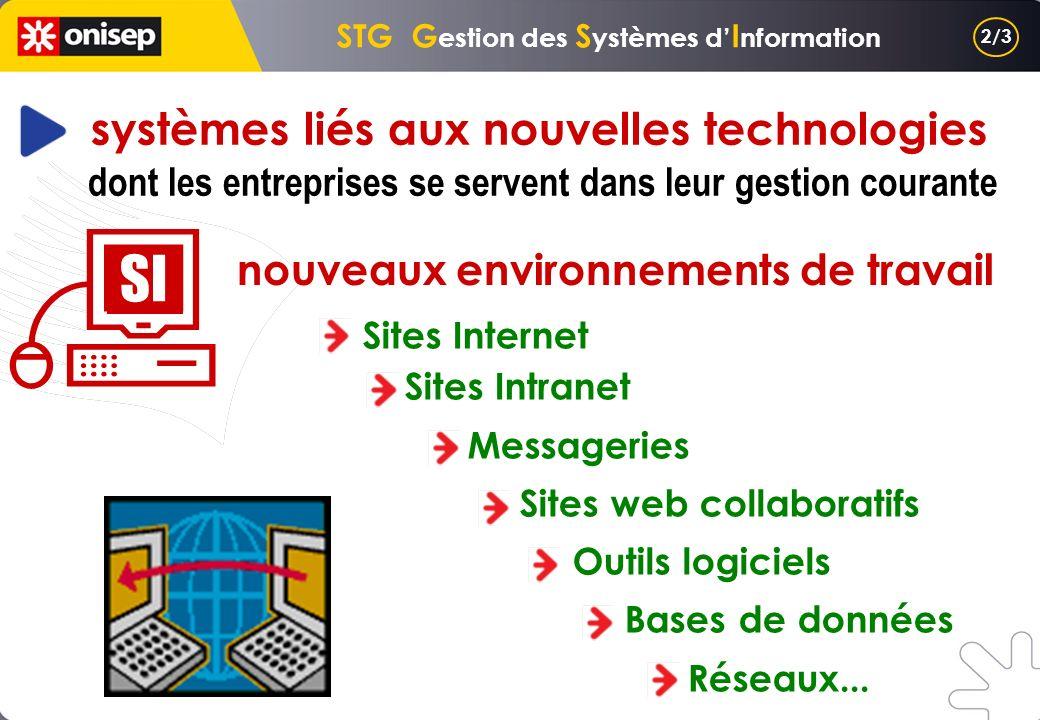 Sites Internet Sites Intranet Messageries Sites web collaboratifs Outils logiciels Bases de données Réseaux... SI nouveaux environnements de travail s
