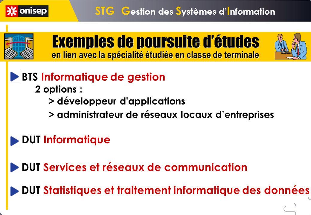 BTS Informatique de gestion 2 options : > développeur d'applications > administrateur de réseaux locaux dentreprises DUT Informatique DUT Services et