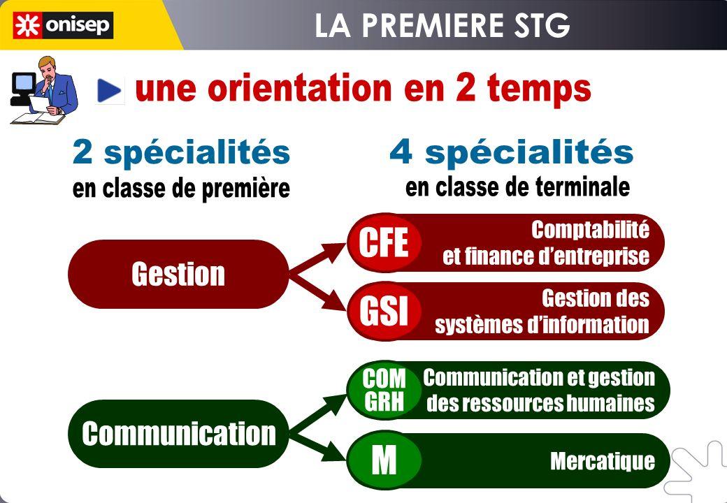 Gestion des systèmes dinformation Communication et gestion des ressources humaines Mercatique Comptabilité et finance dentreprise CFE Gestion GSI M Co