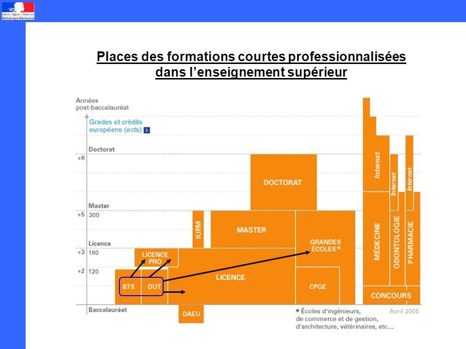 Places des formations courtes professionnalisées dans lenseignement supérieur
